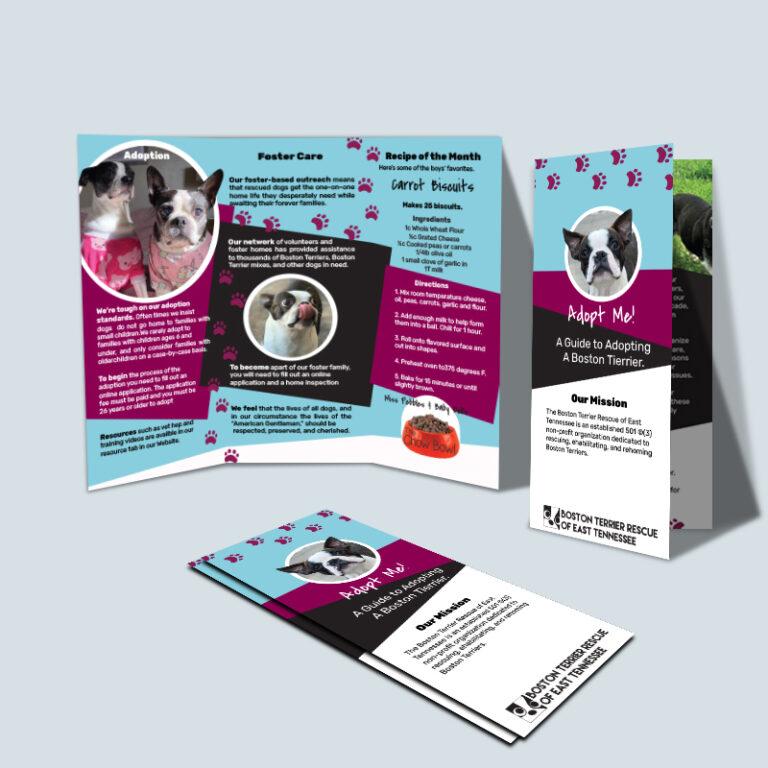 Animal Rescue Brochure
